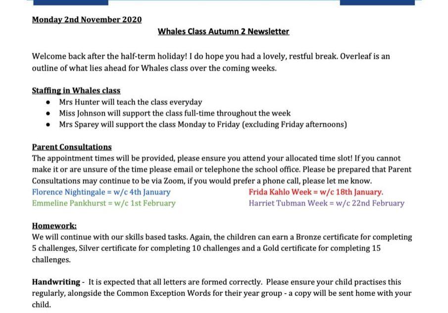 Autumn 2 2020 Curriculum Letter